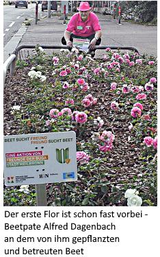 Der erste Flor ist schon fast vorbei - Beetpate Alfred Dagenbach an dem von ihm gepflanzten und betreuten Beet